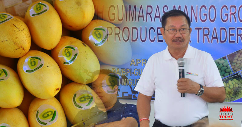 Guimaras mangoes set to conquer Eastern Europe