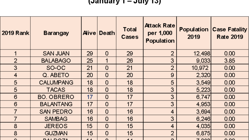 LOOK: Top 10 Dengue-hit barangays in Iloilo City