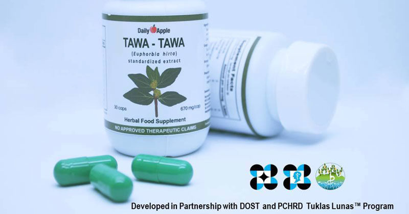 FDA approves first Tawa-tawa capsule supplement versus dengue