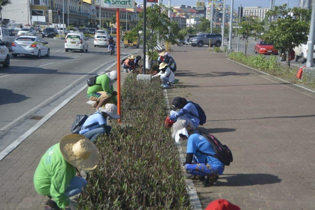 Workers under Iloilo City beautification program