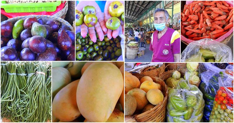 DA WV, AMAD extend help to Leon farmers