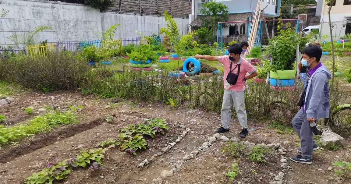 Iloilo City edible landscaping project.