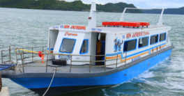 MB Ron Jayredine Fiberglass boat in Guimaras