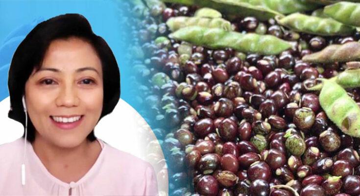 Dr. Doralyn Dalisay on Kadyos as Skin Antibiotic